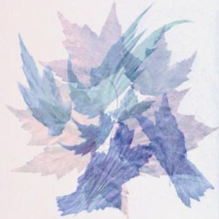 Art: leaf dance by Artist Carolyn Schiffhouer